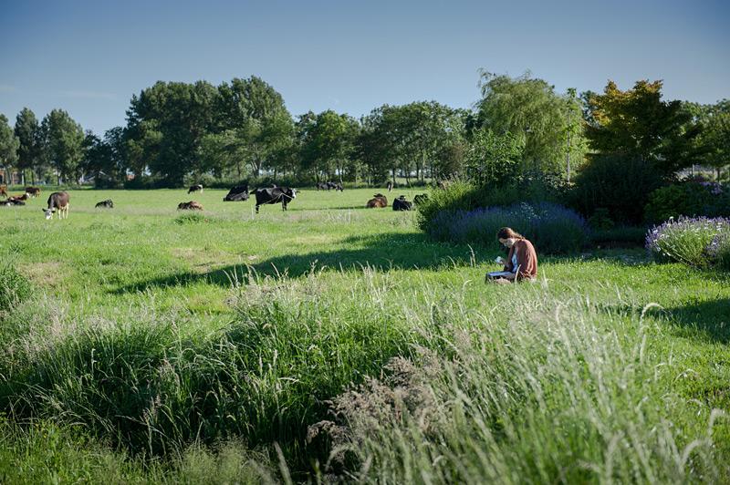 Fotoreportage: Bio-Bauernhof Noorderlicht