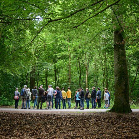 Tag der Artenvielfalt Mannheim