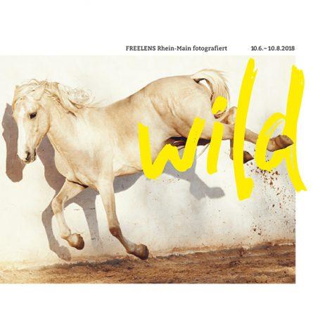 WILD Fotoausstellung im Haus am Dom Frankfurt
